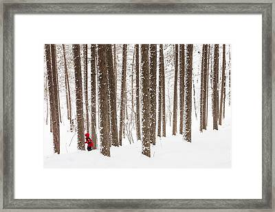 Winter Frolic Framed Print by Mary Amerman