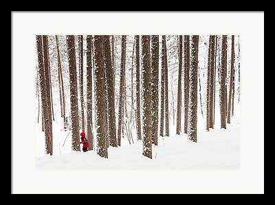 North Woods Snow Snowy Woods Winter Woods Duluth Lake Superior Winter Framed Prints