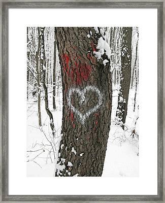 Winter Woods Romance Framed Print by Ann Horn