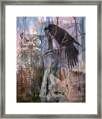Winter Woods Framed Print