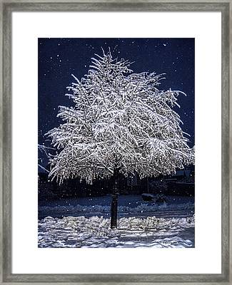 Winter Wrapping Framed Print