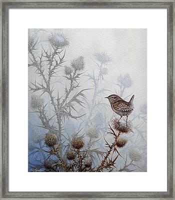 Winter Wren Framed Print