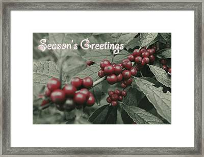 Framed Print featuring the photograph Winterberry Greetings by Photographic Arts And Design Studio