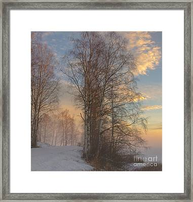 Winterday Framed Print by Sylvia  Niklasson