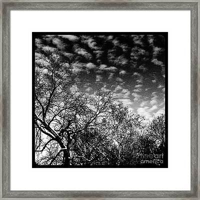 Winterfold - Monochrome Framed Print