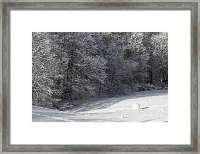 Winterjoy Framed Print by Lutz Baar