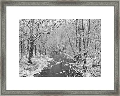 Winterlake Framed Print by Nancy Edwards