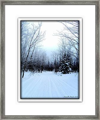 Winterlude In Abitibi Temiscamingue Quebec  Framed Print by Danielle  Parent