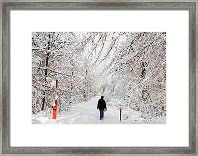 Winterly Forest With Snow Covered Trees Framed Print by Matthias Hauser
