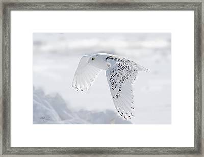 Winters Angel Framed Print