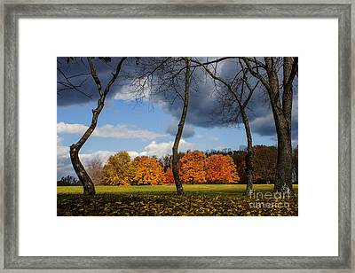 Winter's Approach Framed Print by Tom Gari Gallery-Three-Photography