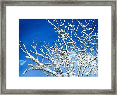 Winter's Artistry Framed Print by Barbara Jewell