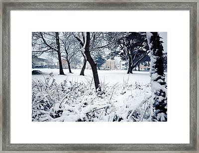 Winter's Blanket Framed Print