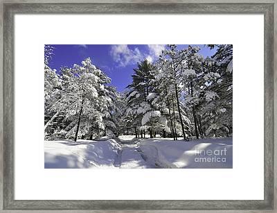 Winters Bliss Framed Print