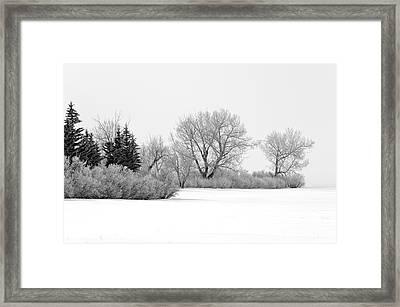 Winter's Cloak Framed Print