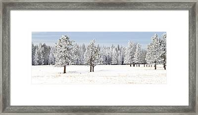 Winter's Coat Framed Print