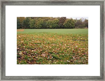 Winters Dawn 2 Framed Print