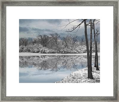 Winters Delight 6 - Limited Edition Framed Print
