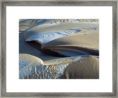 Winter's Designs Framed Print by Dianne Cowen