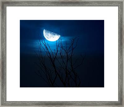 Winter's Eve Moon Framed Print by Mark Andrew Thomas