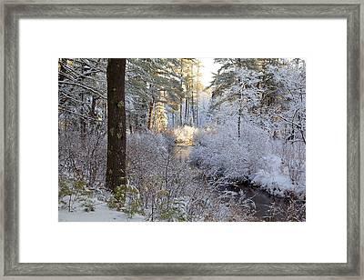 Winter's First Light Framed Print by Larry Landolfi