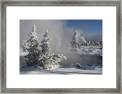 Winter's Glory - Yellowstone National Park Framed Print by Sandra Bronstein