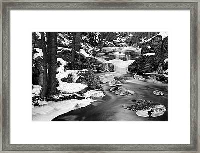 Winter's Grace Framed Print by Luke Moore