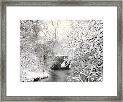 Winter's Grand Finale Framed Print by Jessica Jenney