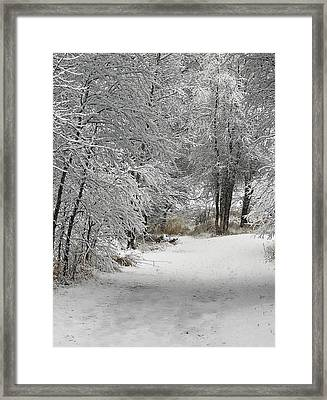 Framed Print featuring the photograph Winter's Kiss by Don Schwartz
