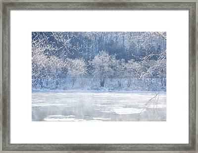 Winters Lace Framed Print by Jim Cook