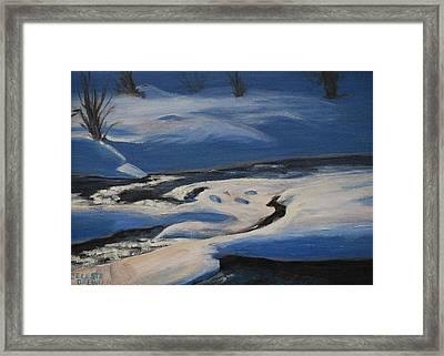 Winter's Lifeless World Framed Print by Celeste Drewien