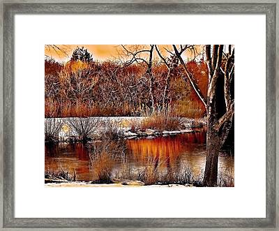 Winters Light Framed Print by Rick Todaro