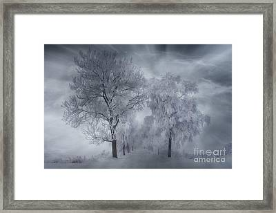 Winter's Magic Framed Print by Veikko Suikkanen