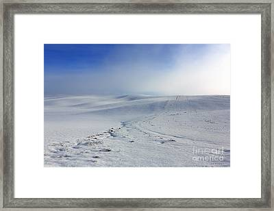 Winters Mist Framed Print by Beve Brown-Clark Photography