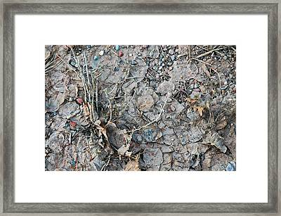Framed Print featuring the photograph Winter's Mud by Allen Carroll