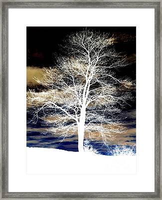 Winter's Night Sky Framed Print by Janine Riley