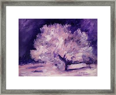 Winters Of The Heart Framed Print by Shannon O'Donnell Shannon Gurley O'Donnell