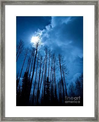 Winters Sky Framed Print by Dana Kern