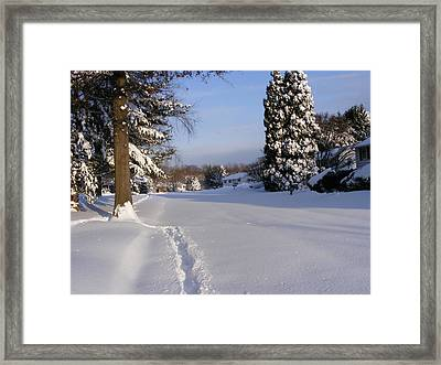 Winters Snow Framed Print by James McAdams