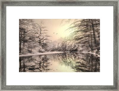 Winter's Soul Framed Print by Lori Deiter