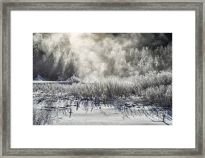 Winter's Touch Framed Print by Sandra Bronstein