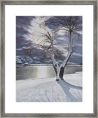 Winter's Whisper Framed Print