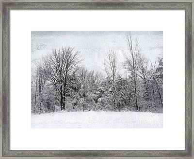 Framed Print featuring the photograph Winter's Wonder by Kathi Mirto