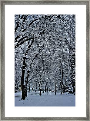 Winter's Work Framed Print by Joseph Yarbrough