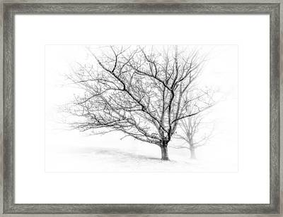 Winter's Work Framed Print by Maria Robinson