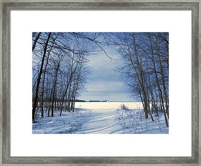 Wintertime At Sheldon Marsh Framed Print