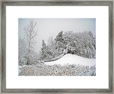 Wintery Fun Framed Print by Aimee L Maher Photography and Art Visit ALMGallerydotcom