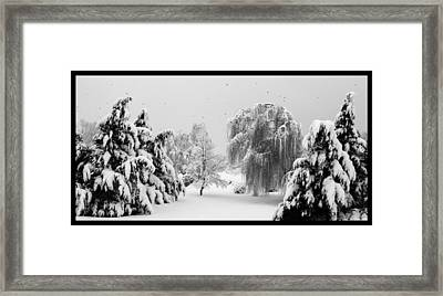 Wintery Scenes 1 Framed Print by David Lester