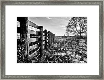 Wintry Afternoon Framed Print