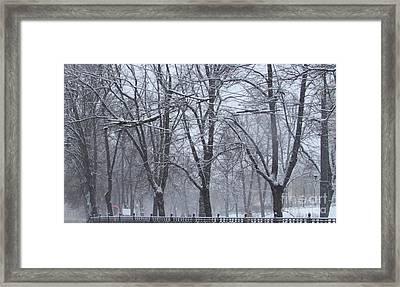 Wintry Framed Print
